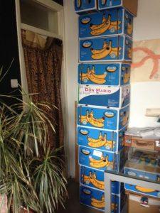 dozen in mijn huis